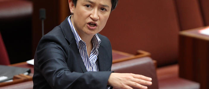 Labor Senator Penny Wong speaks in the Senate chamber at Parliament House Canberra, Monday, Dec. 9, 2013. The Senate will today vote on the governments proposed deal with the Greens to scrap the debt ceiling. (AAP Image/Stefan Postles) NO ARCHIVING